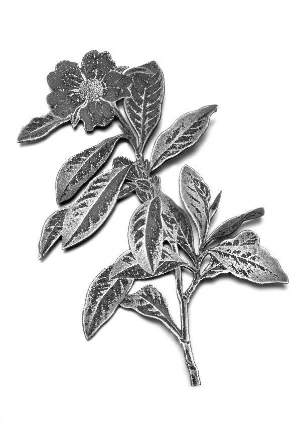 flower 2007